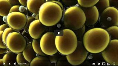 coolsculpting-video-series-part-1